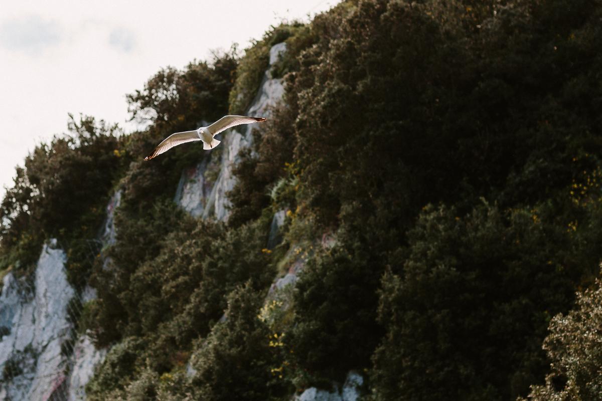 Capri-wedding-photographer-070