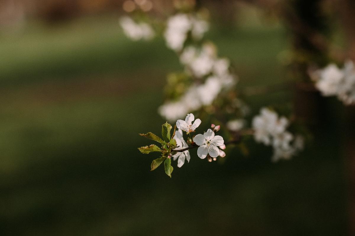 Ana_Easter_18